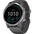Smartwatch Garmin Vivoactive 4 Shadow Gray/Silver