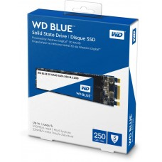 SSD intern Western Digital 250 GB